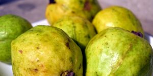 Eating Guava during Pregnancy and Its 11 Health Benefits